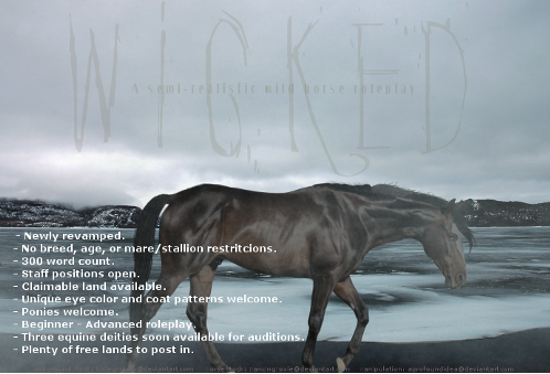 Wicked - Equine RP